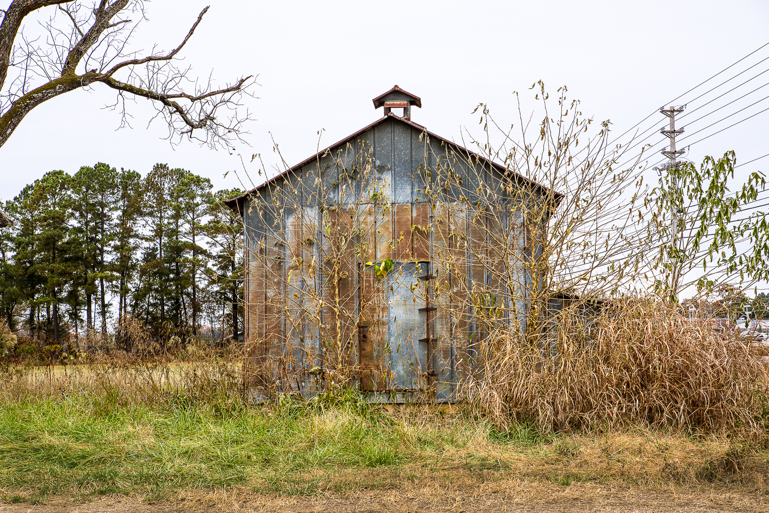 Gray Shed, Wilson, NC 2014