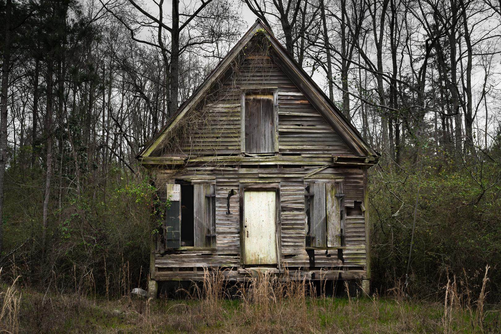 Green Moss House, Sparta, GA 2016